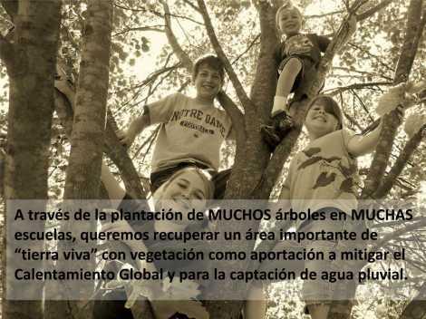 2013-Pres Arbolxconcreto_11